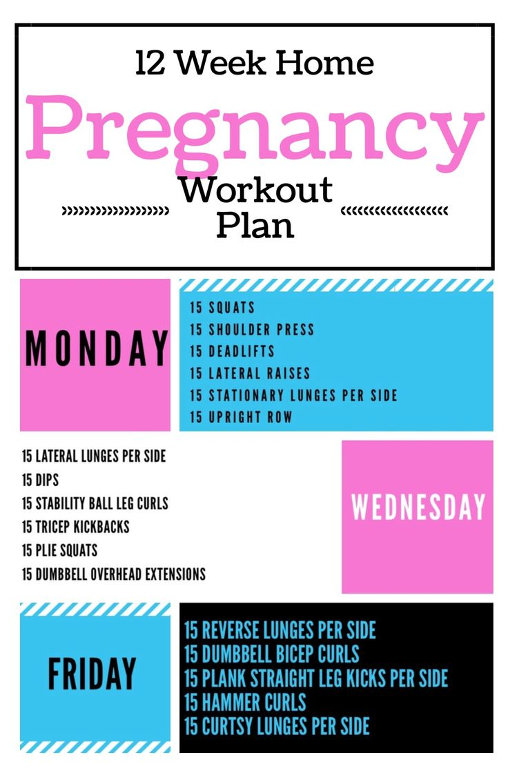 12 Week Pregnancy Workout Plan.  Dumbbell home pregnancy workout.  All exercises with bodyweight or dumbbells.  http://michellemariefit.com/monthly-home-pregnancy-workout/