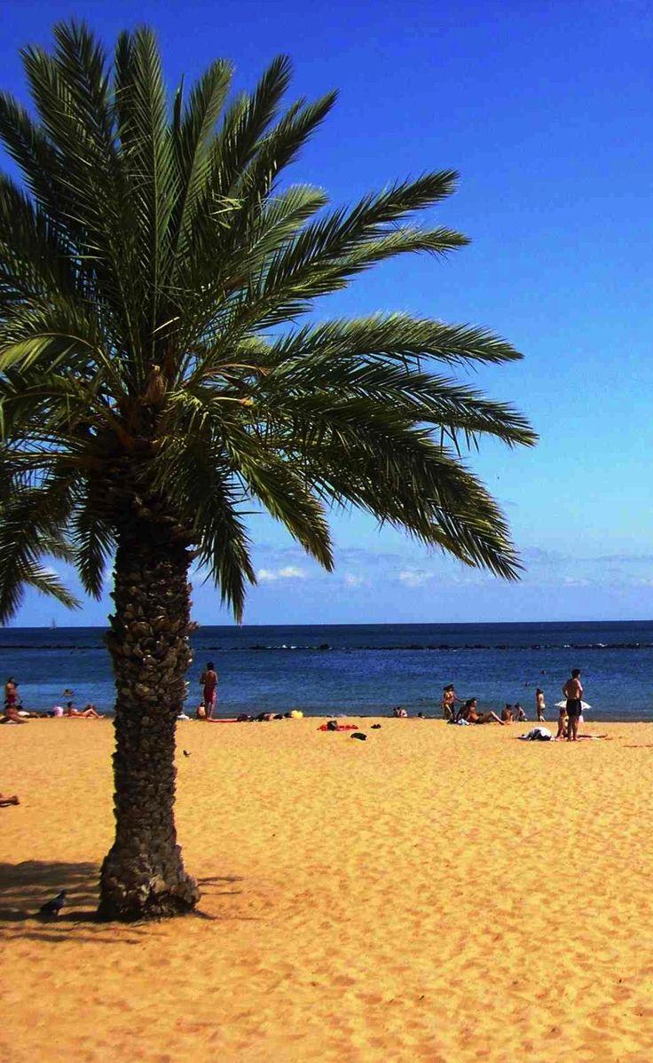 http://www.webtenerife.co.uk/places-interest/beaches/?tab=1&page-index=3  Playa Las Teresitas, Tenerife, Islas Canarias // Beach Las Teresitas, Tenerife, Canary Islands, Spain // Strand Las Teresitas, Teneriffa, Kanarische Inseln  #visitTenerife