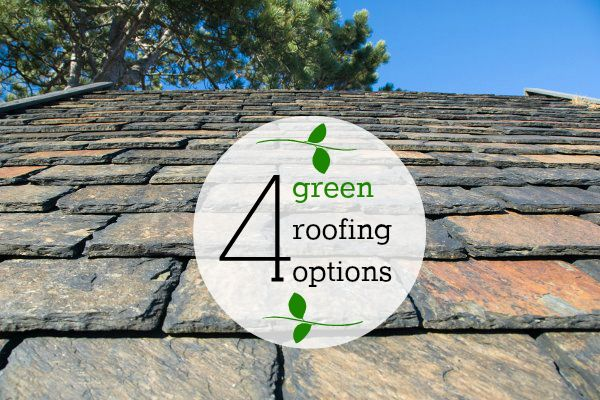 Which One Will You Choose Roofing Pinterest Green