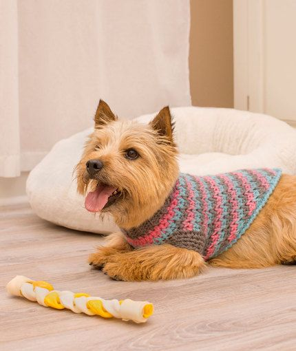 Free pattern from Red Heart. yarn= Worsted. Level=Intermediate. Sizes: s, m, l. La-di-da Dog Sweater