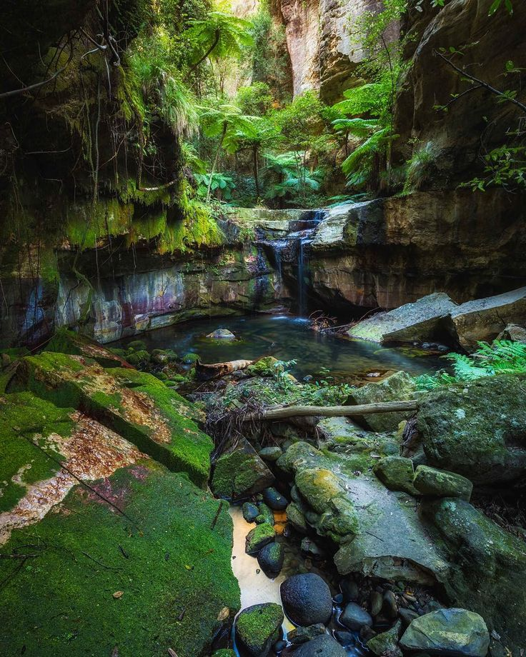 Carnarvon Gorge, QLD