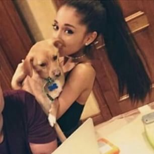 rare pictures of ariana grande with brown hair - Google Search