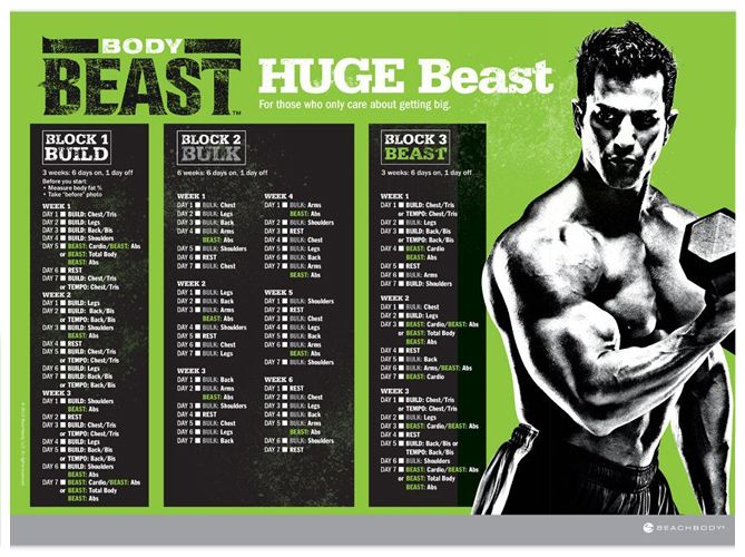 Best Body Beast Calendars Images On   Body Beast
