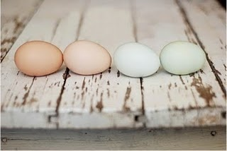 I'm enamored with the shape of eggs and now add color!