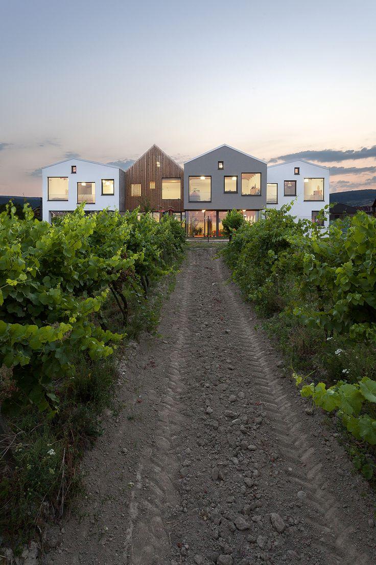 kindergarten over the vineyard - limbach slovakia - architekti.sk - photo by tomáš manina