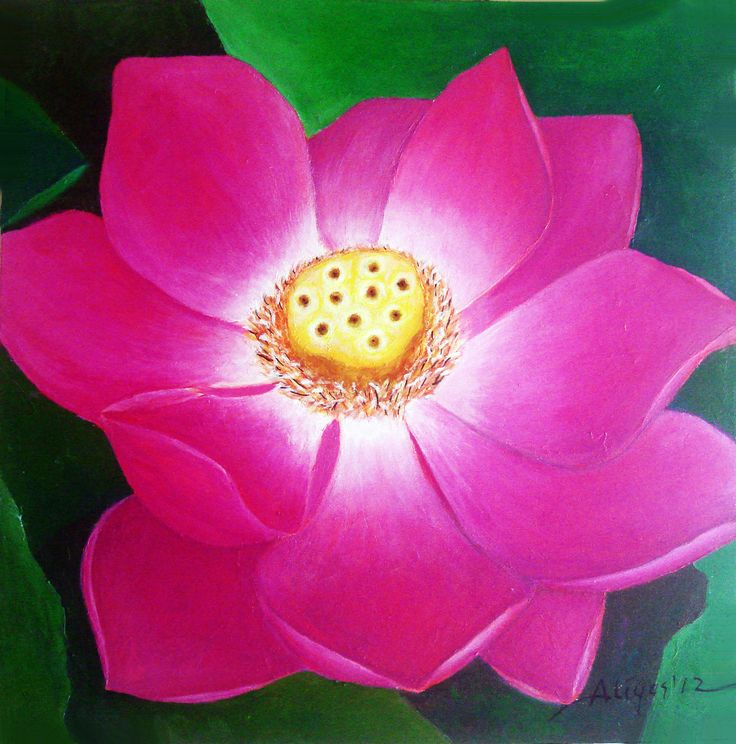 Lotus Flower, Acrylic on canvas, 50cm x 50cm, Artist : Aliyas