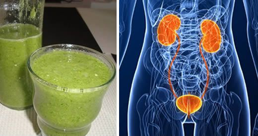 antibiotico naturale infezione vie urinarie