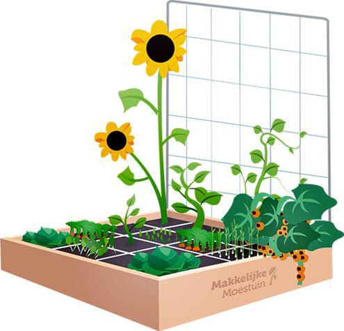 In Dutch but can be an inspiration: Jelle's easy veggie garden / Jelle's Makkelijke Moestuin