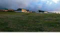 くろべ牧場まきばの風では四季折々の雄大な自然を堪能することができますよ最高標高425mの牧場からは黒部川扇状地や富山湾まで見渡すことが出来ます もちろん景色だけではなく牧場の牛乳を使用したソフトクリームもおすすめの一品です tags[富山県]