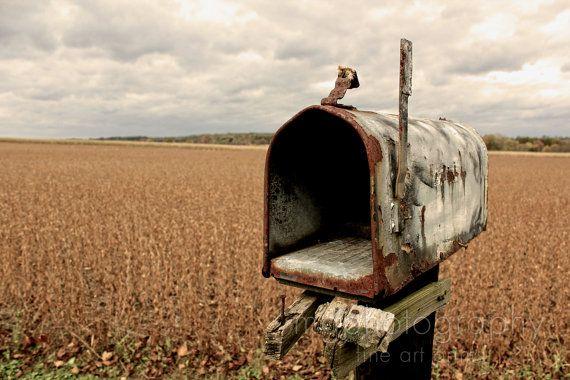 Rustic Americana Primitive Country Mailbox