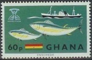 Atlantic Bluefin Tuna (Thunnus thynnus), Steamer, Flag