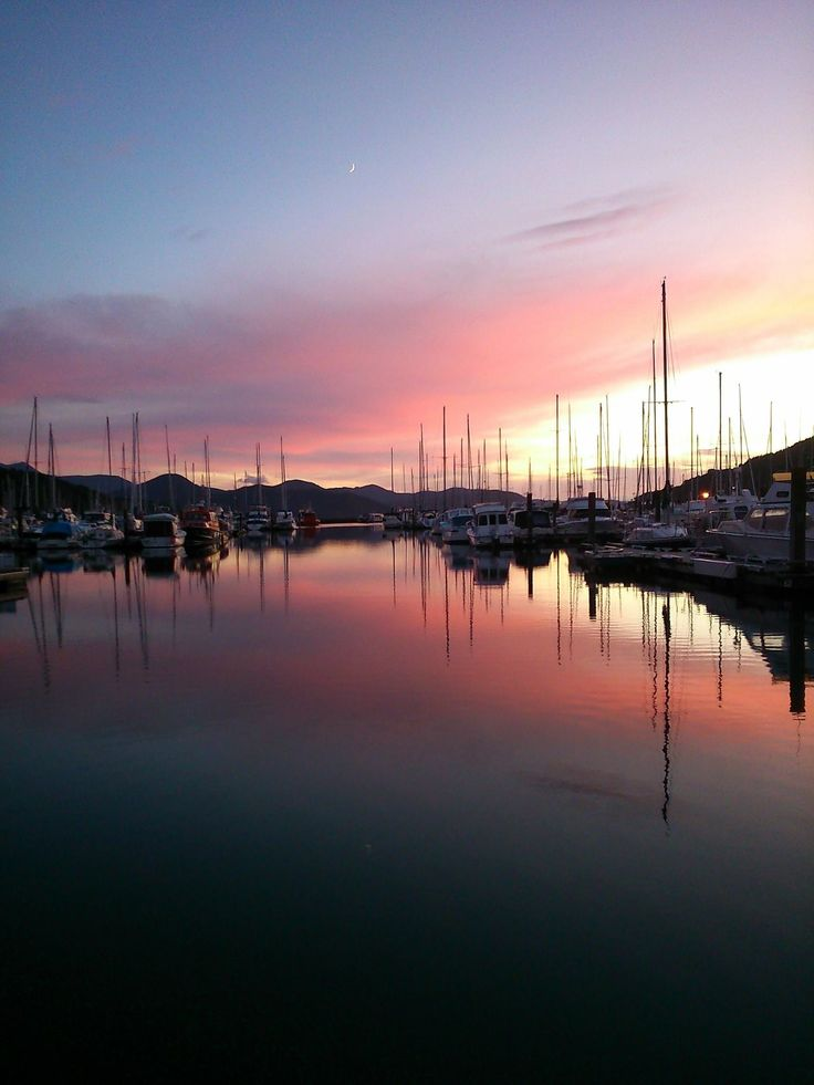 Waikawa Marina Picton NZ. Photo by Lorna Perry