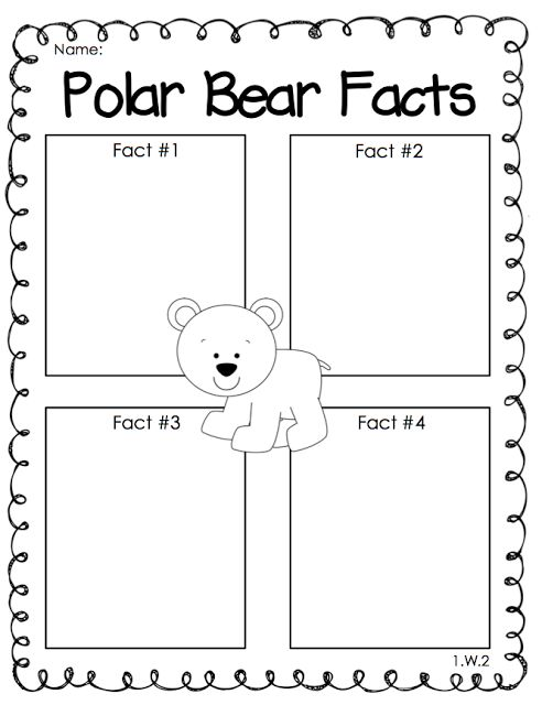 arctic animals facts first grade