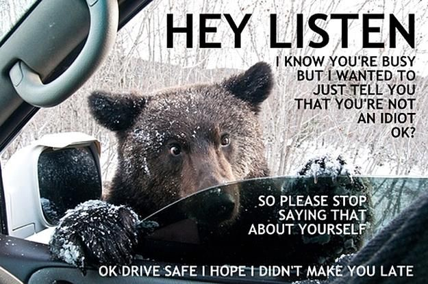 LISTEN, stop saying that about yourself, mmkay?Laugh, Funny Pics, Funny Humor, Care Bears, Funny Stuff, Funnypics, Things, Funny Animal, Hey Listening