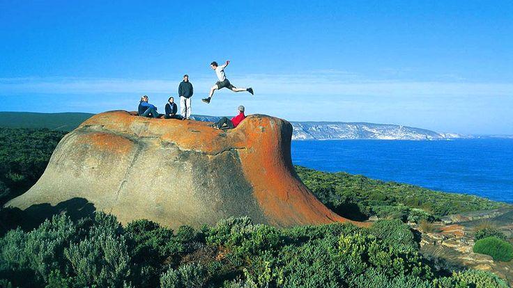 tourism kangaroo island south australia vacations