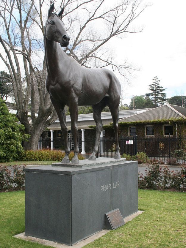 Australian racing legend Phar Lap stands at Flemington Racecourse. Photo: Flickr/williewonker.