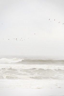 The sea, once it casts its spell, holds one in its net forever. ~Jacques Cousteau