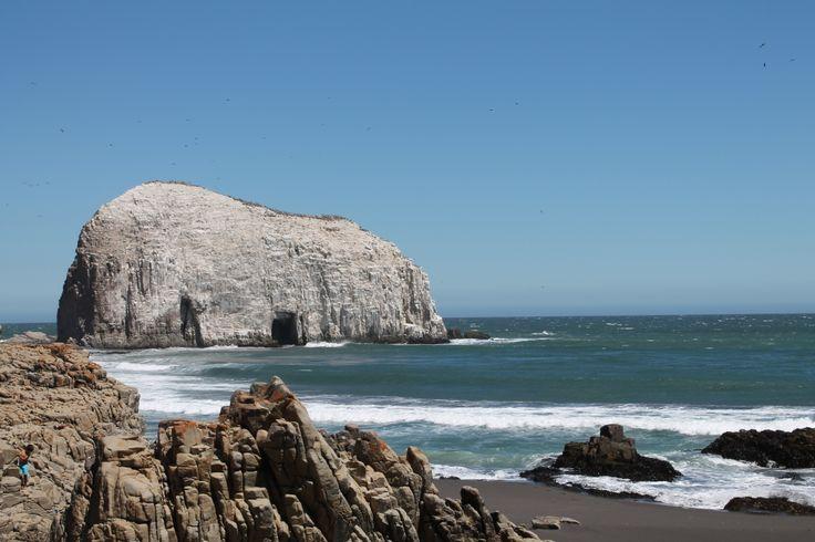 #Talca #VIIRegion #RegionDelMaule #LaPerlaDelMaule #Constitucion #PiedraDeLaIglesia #Mar #Summer #Beach #Beauty