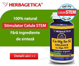 Contribuie la cresterea imunitatii, reduce oboseala si extenuarea, stimuleaza procesul de regenerare celulara