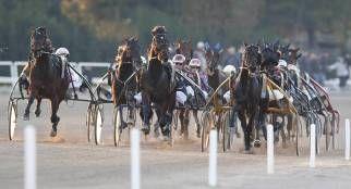 Gran premio Lotteria: i 24 cavalli ammessi alla corsa del primo maggio