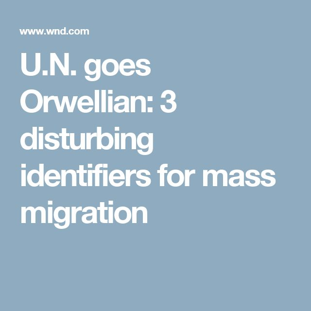 U.N. goes Orwellian: 3 disturbing identifiers for mass migration