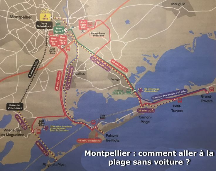 Montpellier : Comment aller à la plage sans voiture ? - Blog Accent Francais - French Language school in Montpellier France