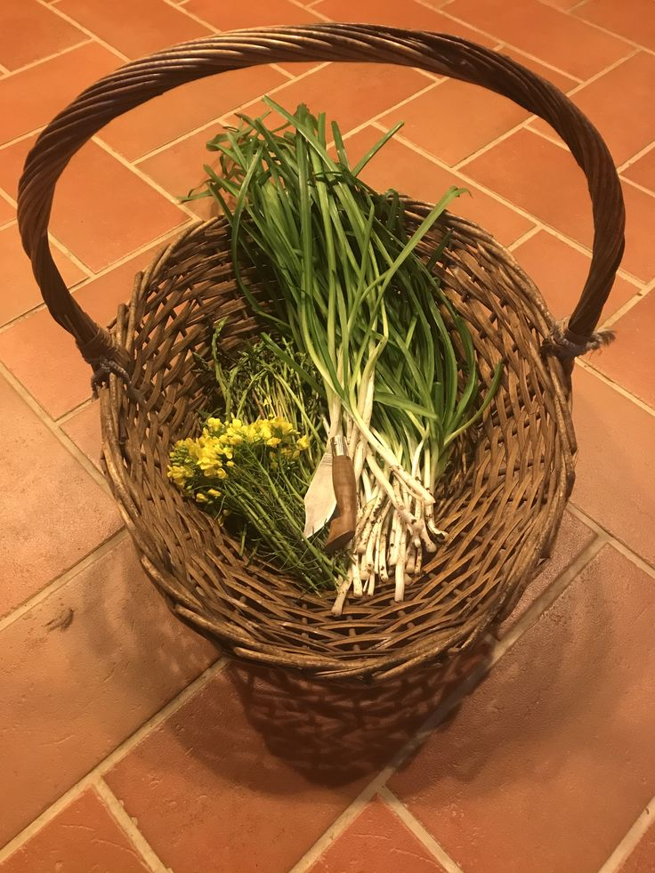 Wild garlic, Asparagus and mustard flowers. An example of