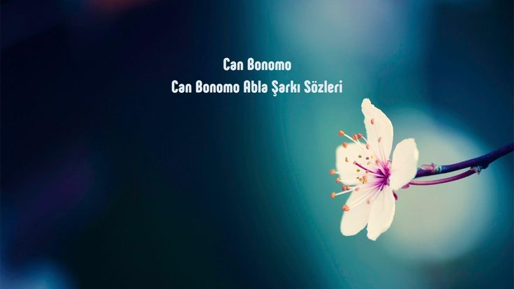 Can Bonomo Abla sözleri http://sarki-sozleri.web.tr/can-bonomo-abla-sozleri/
