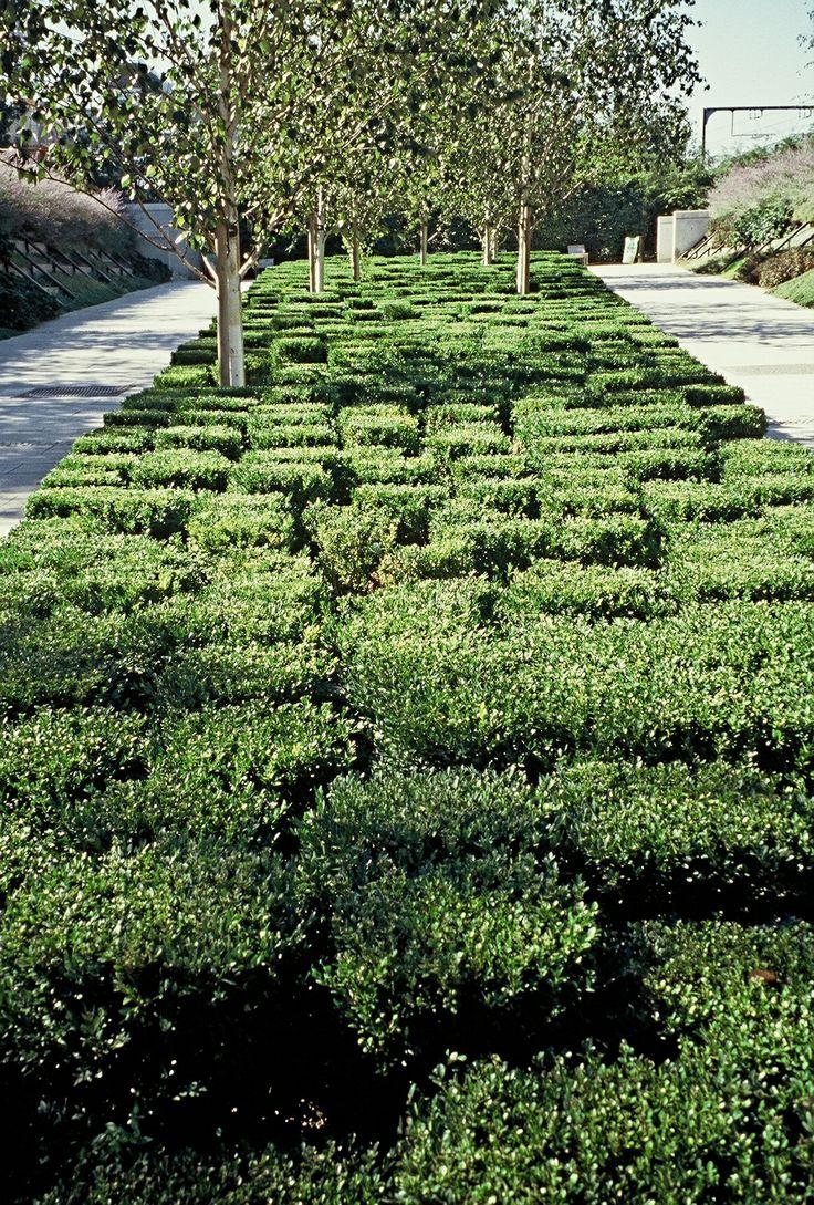 748 best Home Garden Ideas images on Pinterest Landscaping