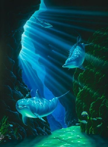 40 best jeff wilkie art images on pinterest for Dolphin paradise wall mural