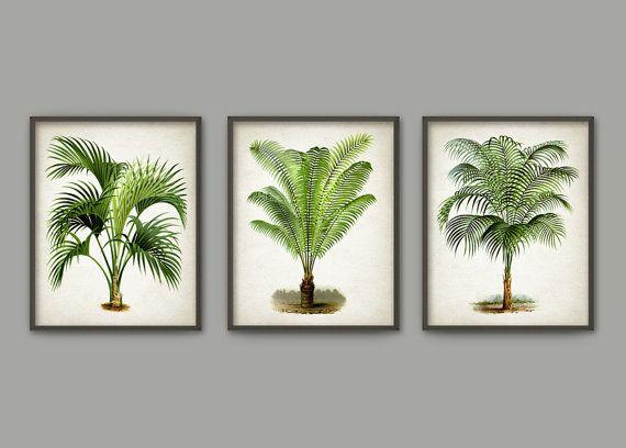 Palm Tree Botanical Wall Art Print Set of 3 - Modern Home Decor - Palm Tree Book Illustration Prints  -Palm Tree Botanical Prints (B413)