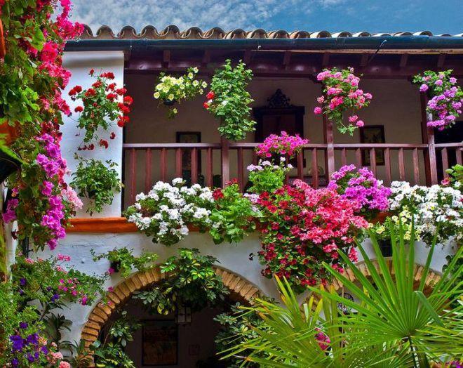 Фестиваль цветов в патио (г. Кордова, Испания)