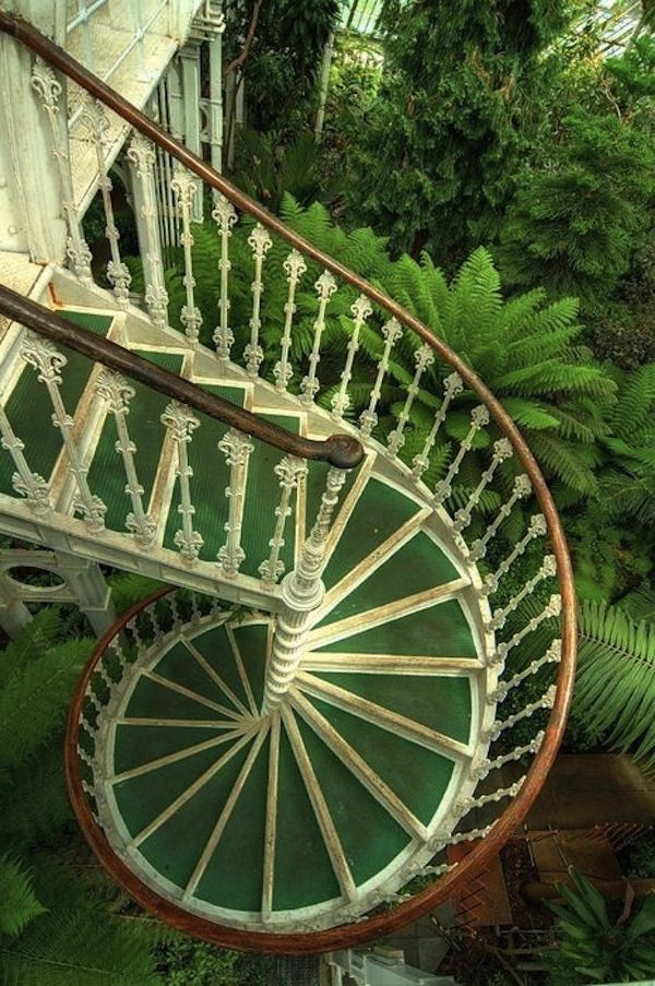 Lovely spiral stairs at Kew Gardens, England. Looks just like an unfurling fern.
