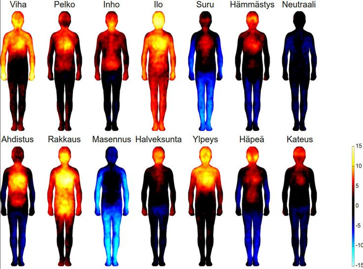 Kartta näyttää, mitkä kehon osat aktivoituivat (lämpimät värit) ja missä aktiivisuus taas laski (siniset sävyt) tietyissä tunnetiloissa.