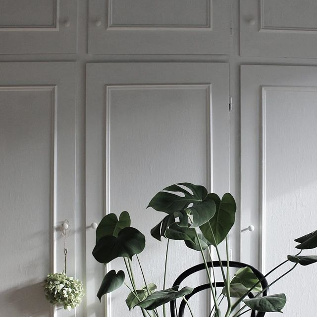 564 best greenery mood images on Pinterest Greenery, Deco and - gardine küche modern