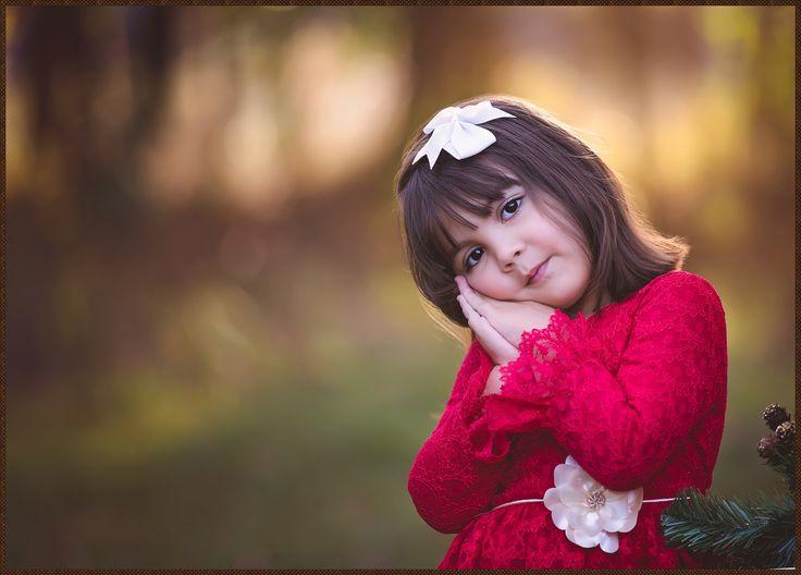 Dahlia Winter Mini » Rose I Photography