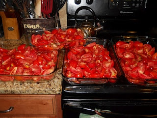 Canning: Oven roasted tomato sauce.