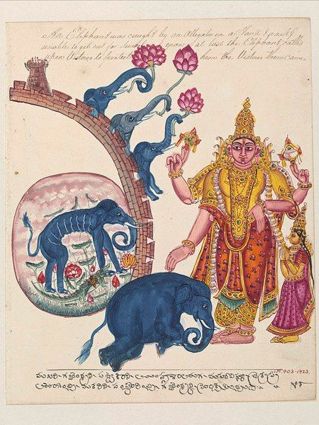 gopalekrishna: Vishnu saving the elephant, Gajendra in 'Gajendramoksha'.ca.1820Trichinopoly, IndiaInscription:'An elephant was caught by an alligator in a Tank and was unable to get out for several years. At last the Elephant called upon Vishnoo to protect him and Vishnoo then came.'Vishnu touching the kneeling elephant, Gajendra (gajendra-moksha), to restore him to his former state as the Pandya king, Indradyumna.Copyright: © V&A Images