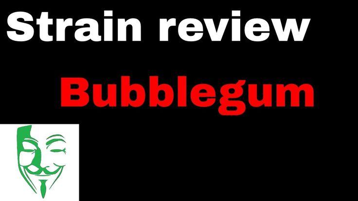 Bubblegum Strain review