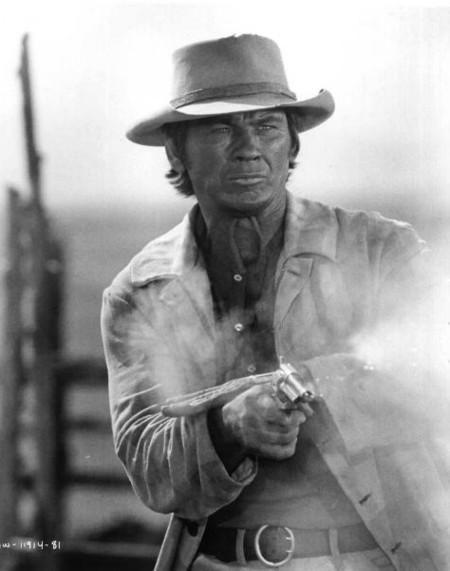 Charles Bronson. Il était une fois dans l'ouest
