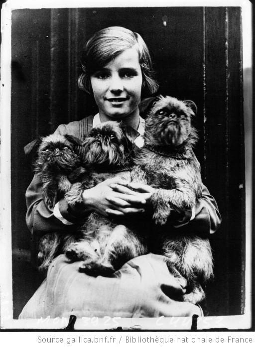 Jeune femme vaporisant son chien avec ses 3 caniches à l'exposition de caniches bruxellois à Londres : [photographie de presse] / Planet - 1