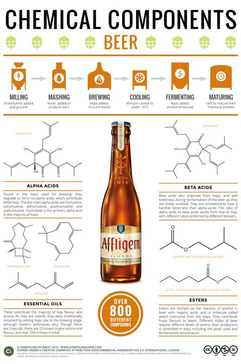 """Infographic: What Gives Beer Its Flavor? - FirstWeFeast.com #infographic #beereducation www.LiquorList.com """"The Marketplace for Adults with Taste!"""" @LiquorListcom #LiquorList"""