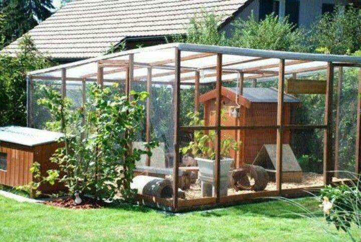 Bunnies house pinterest coops rabbit and farming for Duck houses and runs