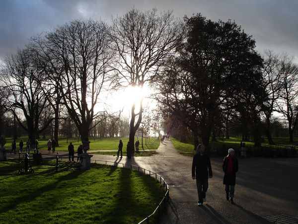 Walkers enjoy a cold winter day in Hyde Park, London. -   Photograph by Georgios Stavrinides