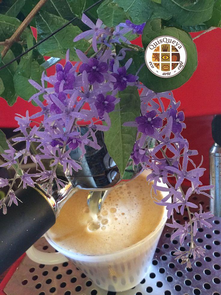 ¡Ya llegó la Primavera! Y en QuisQueya eco-arte-café le damos la bienvenida desde hoy jueves a partir de las 9 pm... ¡Nos encanta!