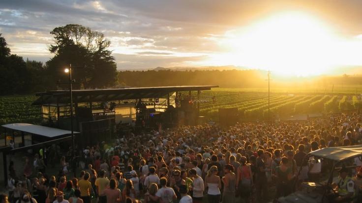 Rhythm and Vines Festival in Nieuw-Zeeland - KILROY