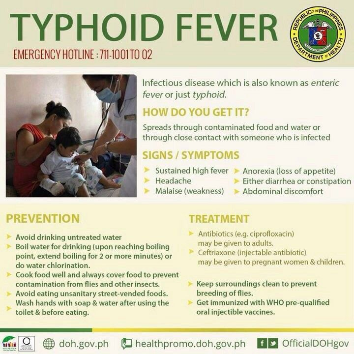 28 Best Salmonella Typhi Images On Pinterest Typhoid Fever Health