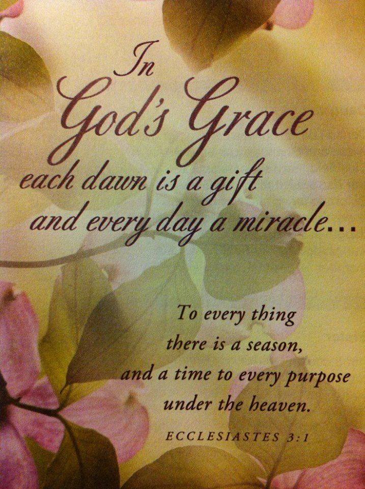 66 best gift of grace images on pinterest christian quotes bible life itself is a miracle negle Image collections