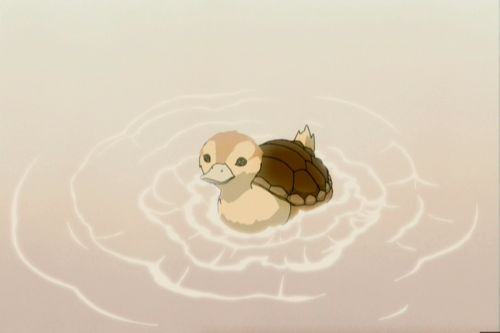 Turtle duck. Don't know what this is from, but I feel the need to pin this for some reason.