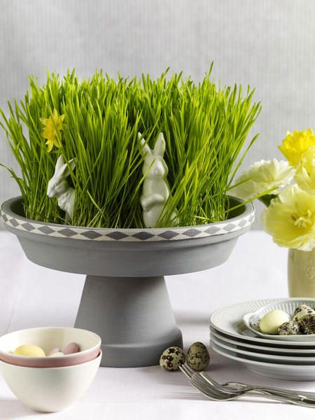 love this for easter or spring...